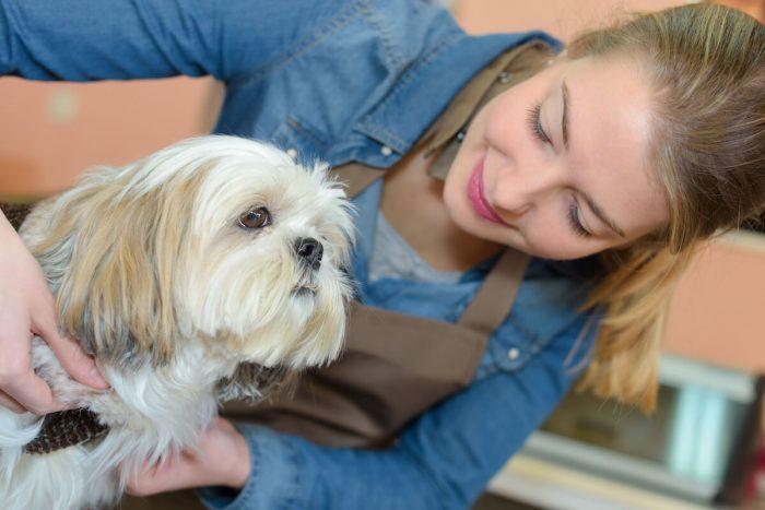 ペットシッターと愛犬